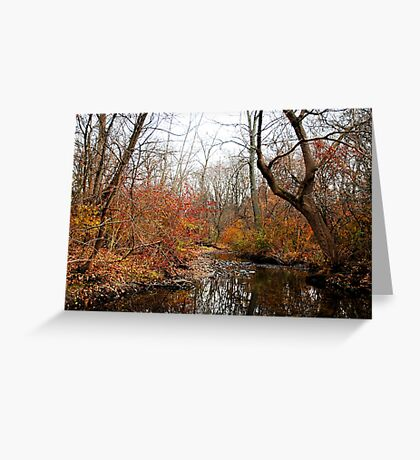 After the First Frost Greeting Card