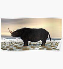 Woolly Rhinoceros Poster