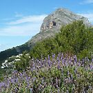 Montgo's eye overlooking lavender by Fay  Hughes