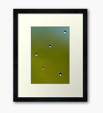 """""""Double Strand"""" Framed Print"""