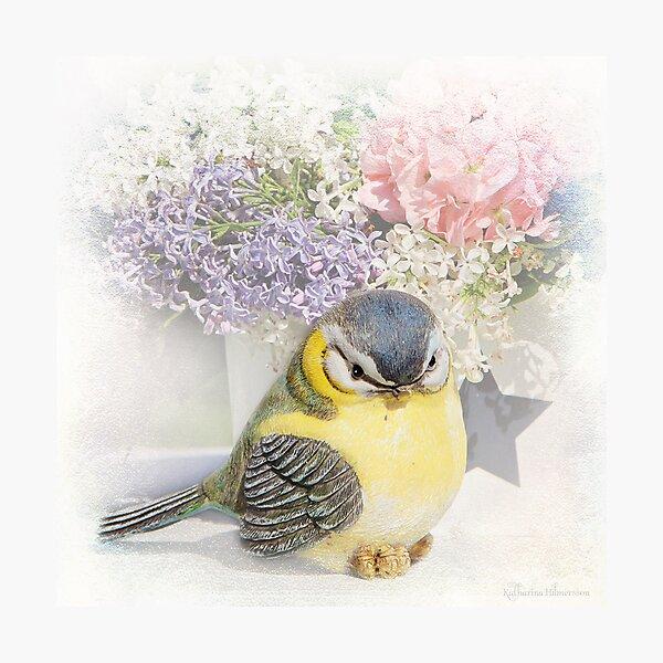 Happy bird Photographic Print