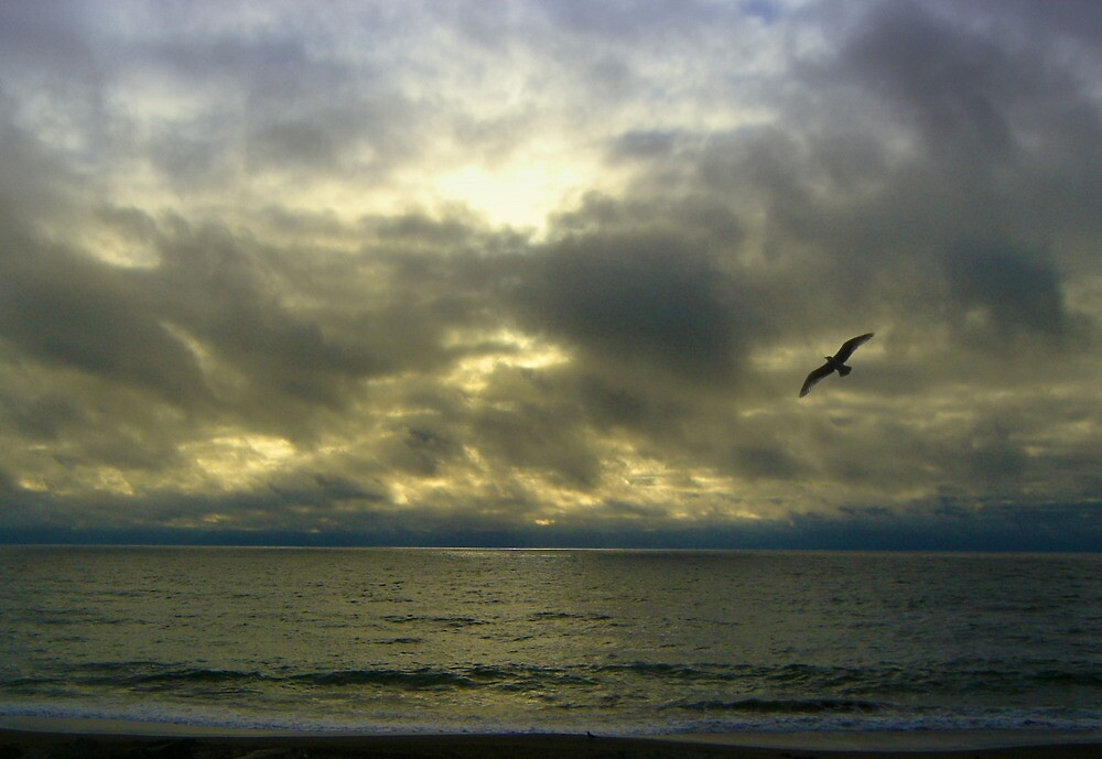 Sea and Clouds by David Denny