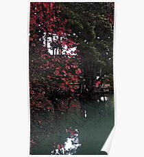 Red Tree in San Francisco Poster