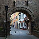 Andernach Gate by Cathy Jones
