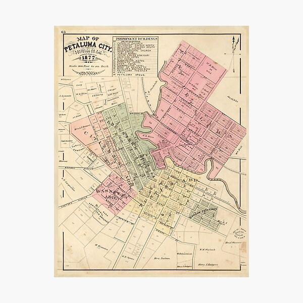 Vintage Map of Petaluma CA (1877) Photographic Print