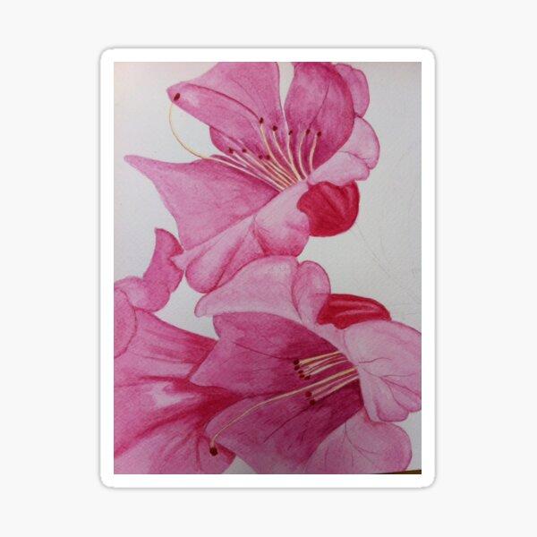 Pink Lilies Sticker