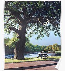 Southampton Riverside park oak tree with cyclist Poster