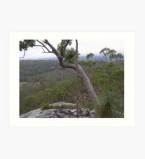Misty morning overlooking Cania Gorge, Sth. East Queensland. Australia. Art Print