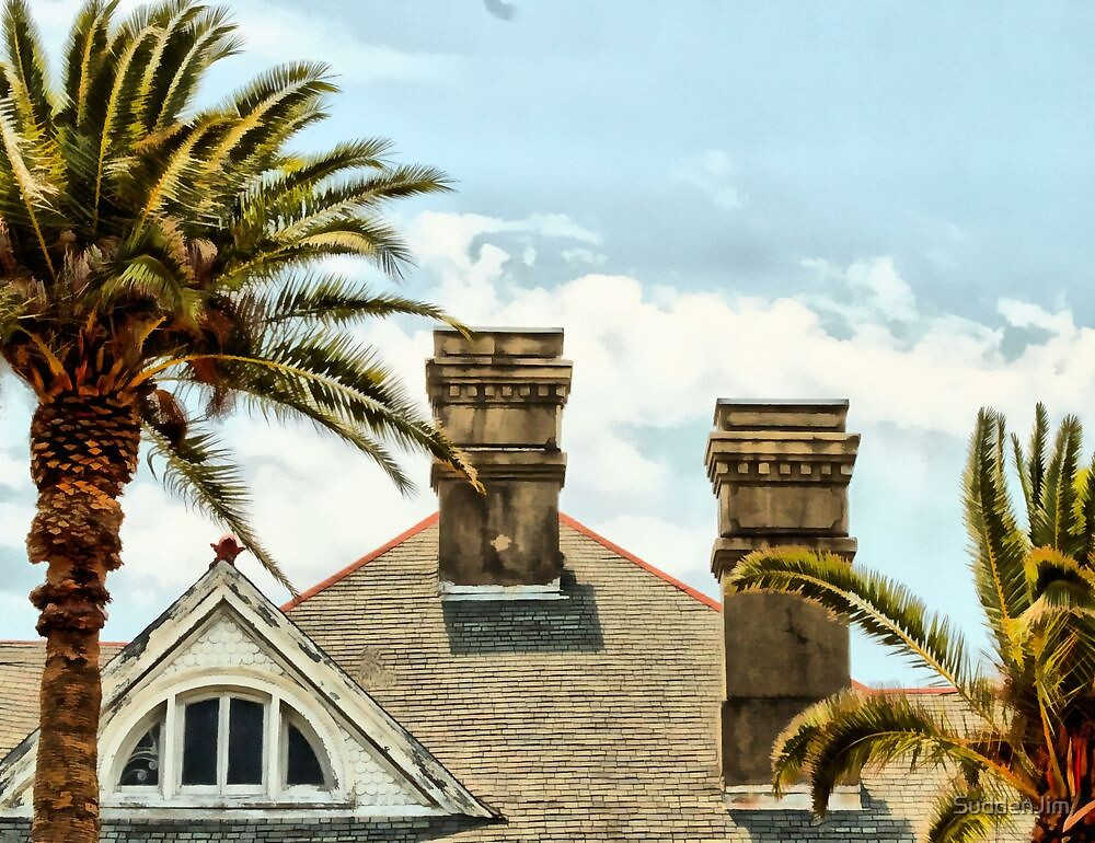 Two Palms, Two Chimneys and Gable by SuddenJim