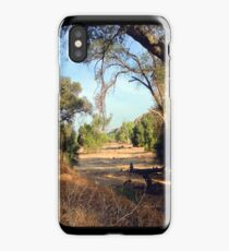Sandy's Meadow iPhone Case