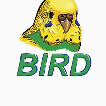 BIRD - Budgerigar by Sadgi