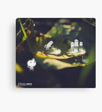 Water drops on a leaf- Wandering forest 2 Canvas Print