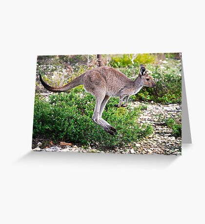 Hop to it. Greeting Card