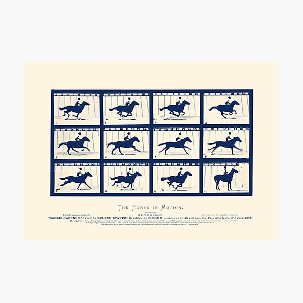 Horse In Motion - Sallie Gardner At A Gallop Photographic Print