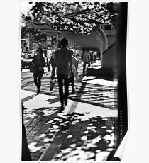 walk in winter shadows Poster