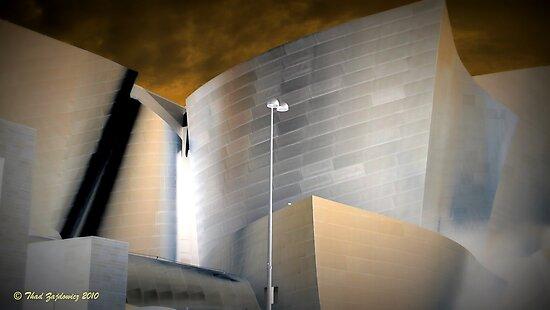 Walt Disney Concert Hall by Thaddeus Zajdowicz