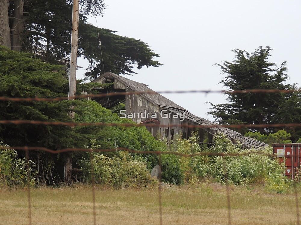 Old Barn at Moss Landing by Sandra Gray