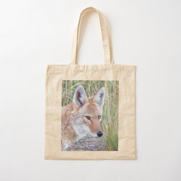 Wile E Coyote Tote Bags | Redbubble |Wile E Coyote Piano