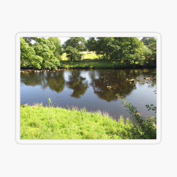 Merch #95 -- Stream Between Trees - Shot 4 (Hadrian's Wall) Transparent Sticker
