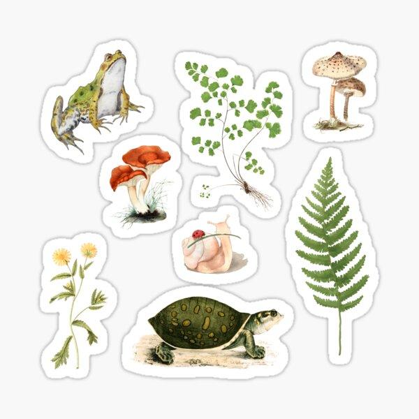 Cottagecore Pond Sticker