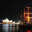 Vivid Sydney by TJSphoto