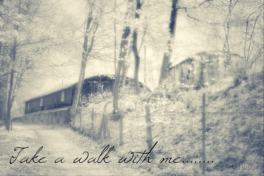 Take a walk with me  by Ali Brown