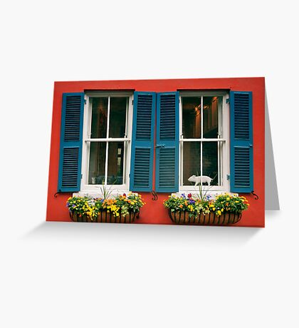 Windows With Teal Shutters - Charleston, SC Greeting Card