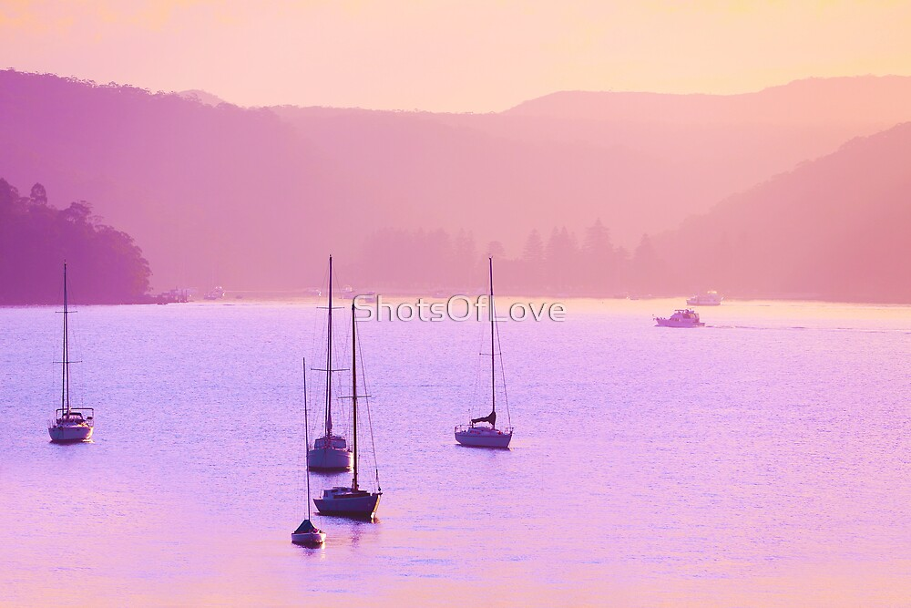 Mauve Days And Warm Summer Nights by ShotsOfLove