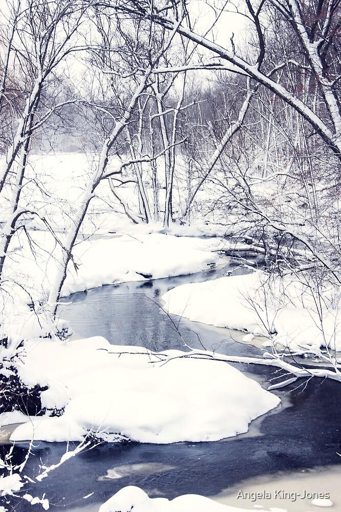 Last of snow by Angela King-Jones