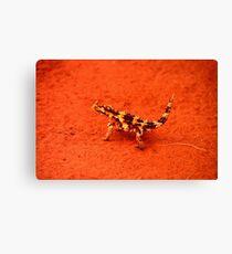 Thorny Devil (Moloch horridus) Canvas Print