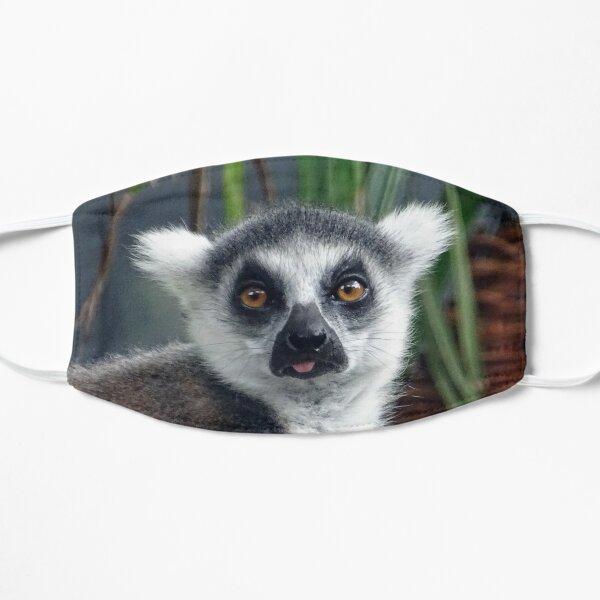 Ring Tailed Lemur Flat Mask