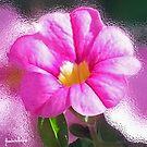 Blissful in pink  by Annabellerockz