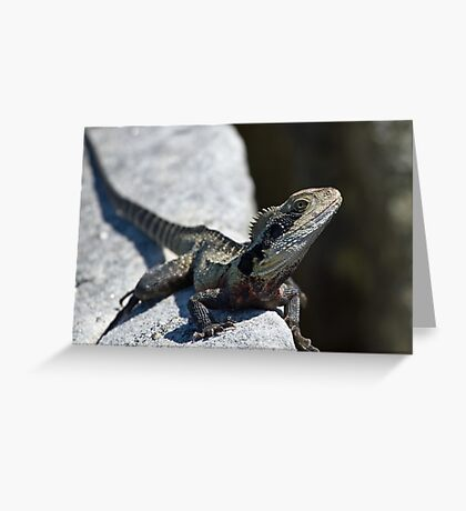 Who says dragons are extinct ? Greeting Card