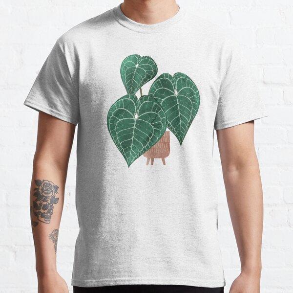 Anthurium clarinervium (potted) Classic T-Shirt