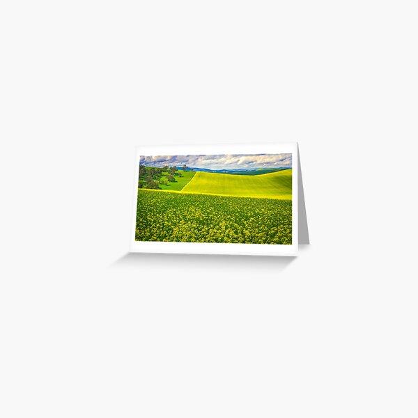 Canola Field Art Greeting Card