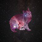 Nebula Kitty by crashin