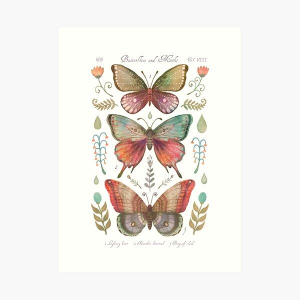 Butterflies and Moths Tab.VIII Art Print