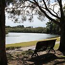 Bench Near the Riverbend by aussiebushstick