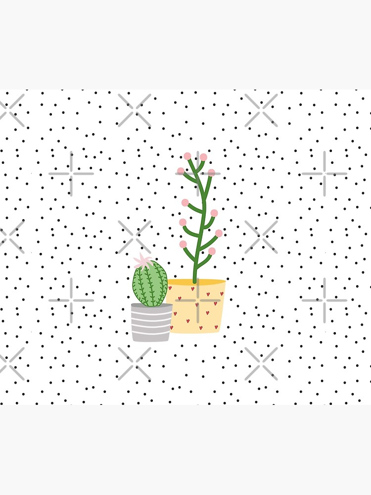 Plant life, cactus by ColorsHappiness
