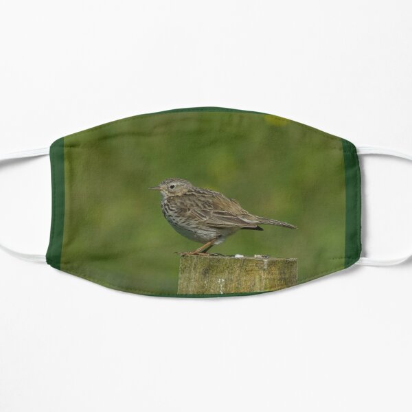 Meadow Pipit Flat Mask