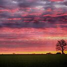 Blood red sunset by Mark Bunning