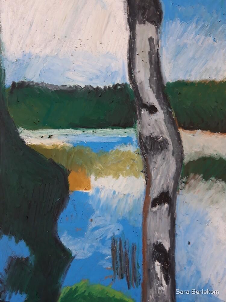 Birch with a smal lake by Sara Berlekom