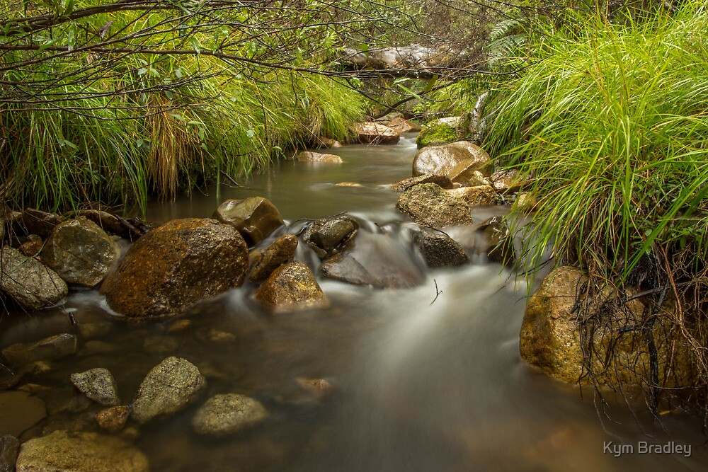 Finally some Water To Run through the River Veins Canberra  by Kym Bradley