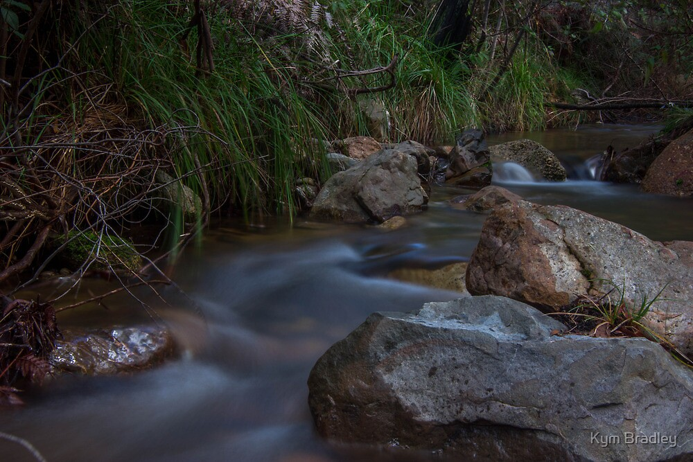 More then a Trickle  Canberra Rivers Start To Flow  by Kym Bradley