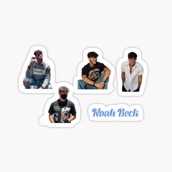 Noah Beck Stickers Pegatina