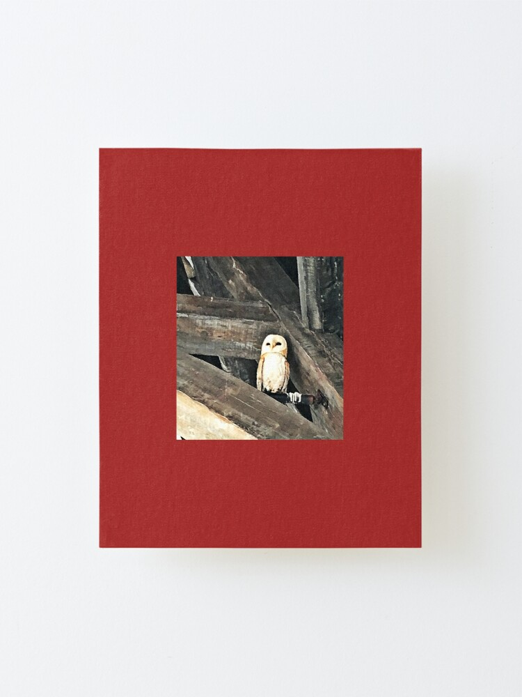 Alternate view of Owl Mounted Print