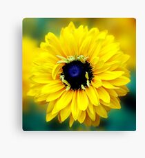 Colour Of Life XXIII [Print & iPad Case] Canvas Print