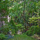 Mystery Garden by Heather Friedman