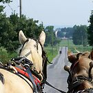 Country Road by wickedmommicked