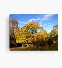 Firmly Stable Canvas Print